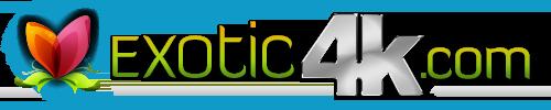 Exotic4K.com